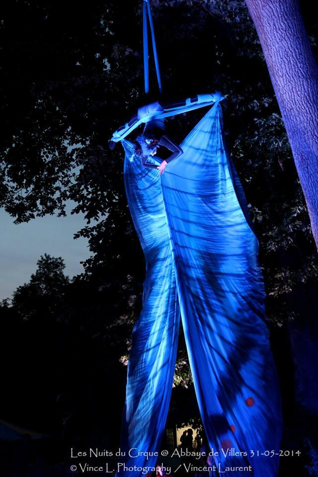 Spectacle aérien – Morpho le papillon bleu