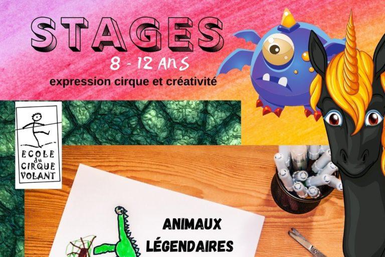 Stage cirque, expression et créativité